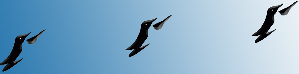 Penguin Office Services
